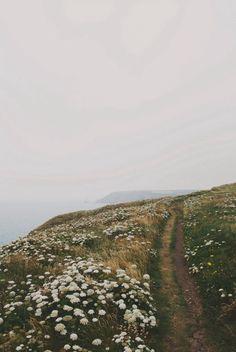 Coastal walk #Landscape #nature #path #cliff