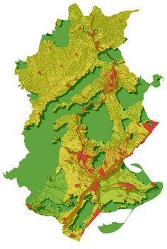 Mapa d'impedància de la connectivitat ecològica a les Terres de l'Ebre El vam fer l'any 2006. Flowers, Plants, Maps, Plant, Royal Icing Flowers, Flower, Florals, Floral