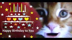 Happy Birthday Video Animation