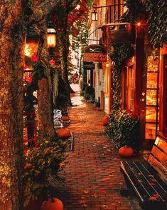 Autumn Cozy, Autumn Fall, Autumn Leaves, Autumn House, Autumn Nature, Fall Harvest, Autumn Feeling, Happy Autumn, Dark Autumn