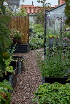 Form och Flora of Landscape Design, Garden Design, Cheap Dorm Decor, Rose Wedding, Garden Inspiration, Gardening Tips, Outdoor Gardens, Greenery, Outdoor Living