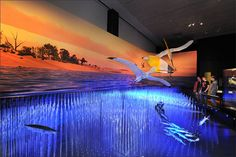 Pterosaurs: Flight in the Age of Dinosaurs | LiveScience