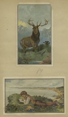 [Cards depicting a buck and a boy reading outdoors on a scenic overlook.] From New York Public Library Digital Collections.
