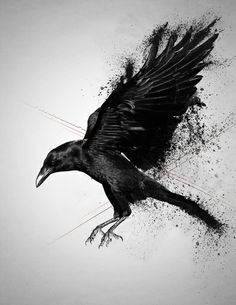 crow tattoo - Google Search                                                                                                                                                                                 More