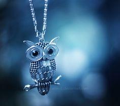 Night owl ... by aoao2.deviantart.com on @deviantART