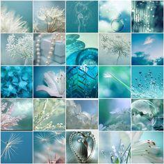 aqua teal turquoise | Aqua, Teal and Turquoise / pretty