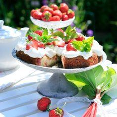 Rabarbertårta med vaniljkräm och jordgubbar