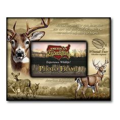 American Expedition Whitetail Deer Canvas Photo Frame >>> Click image to review more details.