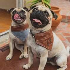 Lux Reversible Loop Bandana, Pet Fashion. - S / Denim