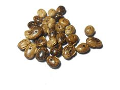 Items similar to Wooden coffee beads Diy Jewelry Jewellery findings Jewelry Making Natural wood beads Crafting Bead supplies Craft supplies by Neda on Etsy Jewelry Findings, Diy Jewelry, Jewelry Making, Jewellery, Unique Jewelry, Beading Supplies, Bead Crafts, Natural Wood, Craft Supplies