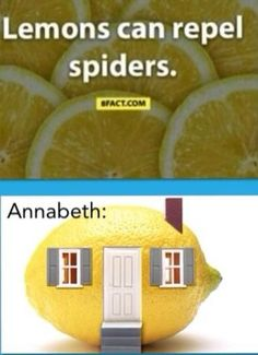 Annabeth would totally do this :) >>> I would too, if there was a large enough lemon, and a way to contain the lemon juice.