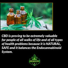 CBD is proving to be extremely valuable for people of all walks of life and of all types of health problems because it is NATURAL, SAFE and it balances the Endocannabinoid System. Endocannabinoid System, Health Problems, Hemp, Walks, King, Natural, People, People Illustration, Nature