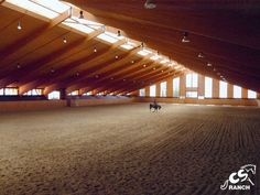 Indoor arena.....a girl can dream