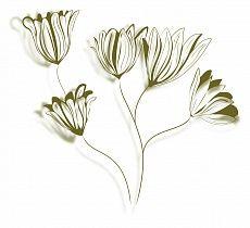 Blüten grün #wallpaper #design #christianeElle