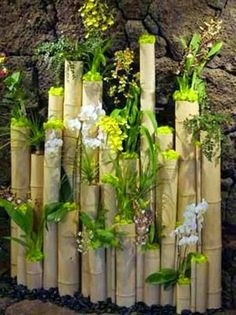 Love the planted bamboo, great idea. Reclaimed Bamboo Logs Adorned with White Phalenopsis Orchid Plats, Oncidium Orchids and Wild Cats. Created by MartinRoberts Design Dream Garden, Garden Art, Garden Design, Bamboo Crafts, Bamboo Fence, Hedges, Garden Projects, Garden Ideas, Garden Inspiration
