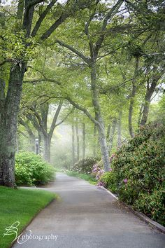 Heritage Gardens in Sandwich, MA | Betty Wiley on flickr