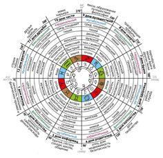 Хорарная астрология в инфографике. Основы прочтения хорарной карты.