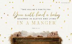 Christmas Eve Scripture & Devotion