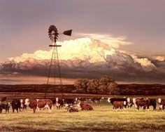 Summer Pastures Fine-Art Print by Bonnie Mohr at UrbanLoftArt.com