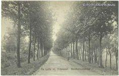 De Lutte, Bentheimerstraat