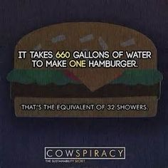 cowspiracy quotes - Yahoo Image Search Results