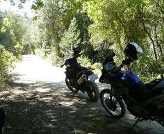 bundu motorcycle adventure tours plett - Google Search Adventure Tours, Motorcycle Adventure, Activities, Offroad, Vehicles, Cape, Mountains, Google Search, Beach