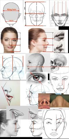 drawing faces step by step ; drawing faces for beginners drawing face proportions Face Proportions Drawing, Drawing Face Shapes, Simple Face Drawing, Drawing Face Expressions, Drawing Heads, Wall Drawing, Figure Drawing, Drawing Lessons, Drawing Tips