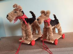 Sandra Pounder Designs, find me on Facebook. Airedale and a Welsh Terrier on wheels.