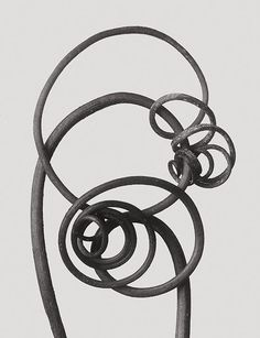 "'Cucurbita sp., pumpkin, tendrils' from ""Karl Blossfeldt: Masterworks,"" published by D.A.P.. Via PDN Photo of the Day."