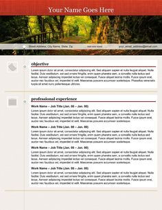 Creative Resumes Are The Best Way To Sell Your Experience And Skills  Without You Being Present. Plug Your Resume Content Into One Of Our  Creative Templates ...