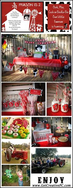 On The Farm - Birthday Party Theme - Creative Printing of Bay County