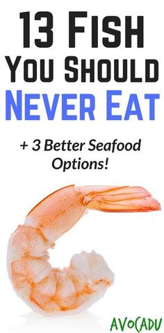 13 Fish You Should Never Eat + 3 Better Seafood Options - Some of these fish have tons of toxins that can be harmful to the body.  Learn what healthy fish you should eat in your diet. http://avocadu.com/fish-should-never-eat/