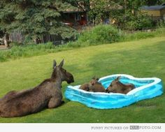 It's going to be a hot one on the East Coast today....Find a way to stay cool.