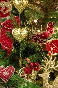 Beautiful Red and Gold Decorations adorn the Christmas Tree