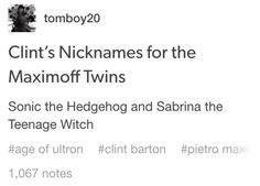 // Quicksilver, Scarlet Witch, Pietro Maximoff, Wanda Maximoff, the Maximoff Twins, Clint Barton, Hawkeye //