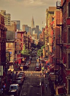 Chinatown is an exciting, vibrant, busy part of NY (the r actually 7 Chinatowns in NYC). Its the home to the largest Chinese population in one place in the Western hemisphere, bordering the Lower East Side to its east and Little Italy to its north.