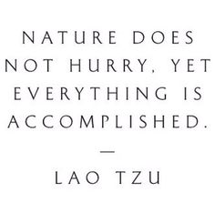 Maybe I need to surround myself with nature more so I can truly understand this and apply it to my life.. slow and steady wins the race. You won't get anything of quality when you rush.