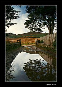 The Path to Clachnaben, Glen Dye, Aberdeenshire, Scotland