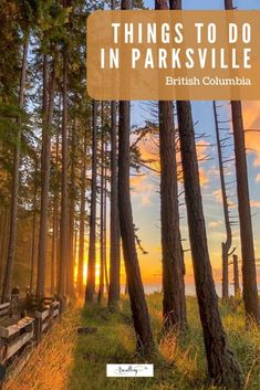 Looking for the perfect family friendly Vancouver Island holiday destination? We're sharing fun activities from ocean kayaking to caving to hugging giant trees, these adventurous and family friendly things to do in Parksville with kids will make perfect summer vacation memories. #canadatravel #familytravel #vancouverisland #parksville Solo Travel, Travel Usa, Columbia Travel, Travel Tips, Travel Guides, Vancouver Travel, Vancouver Island, Best Family Vacations, Family Travel