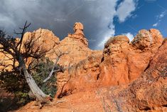 Landscape Of Closeup Hoodoos by PhotographerJen on @creativemarket #Landscape #Desert #Mountains #Design #CreativeMarket