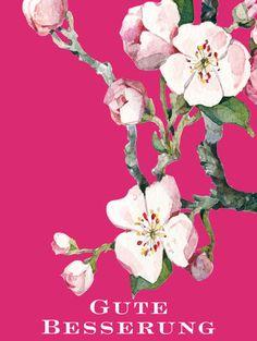 Postkarte Kirschblüte, Besserung