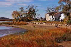 Autumn in Stony Brook, NY.