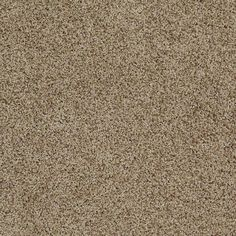"Carpeting in style ""Stylish Transformation I"" - TV251 - Riverbank - Give your home a little sparkle - Flooring by Shaw"