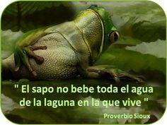 wirapuru: Proverbios Nativos