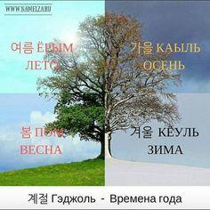 Korean Lessons, Korean Words, Learn Korean, Korean Language, Cool Words, Hogwarts, Asia, English, Kpop