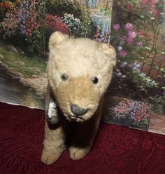 ANTIQUE MOHAIR YOUNG BEAR, SWIVEL HEAD, EXCELSIOR STUFFED, GLASS EYES, 5""