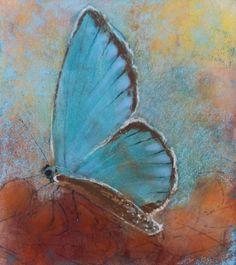 Vlinder - Loes Botman pastels, pastelkrijt tekeningen