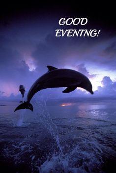 Good Night Image, Good Morning Good Night, Good Evening Greetings, Goeie Nag, Teacher Appreciation Week, Wallpapers, Bright, Beautiful, Bom Dia