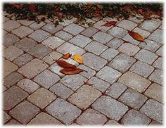 Fantastiche immagini su pavimenti per esterni autobloccanti