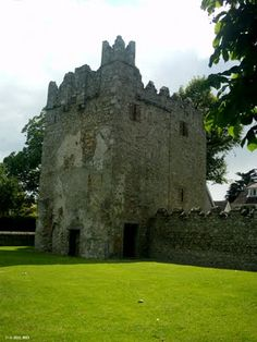 Monkstown Castle lies in a nicely kept green area near the Village of Monkstown. The Castle was built between the an. Castles In Ireland, Ireland Homes, Amazing Places, Beautiful Places, Irish Sea, Castle House, Beautiful Castles, Republic Of Ireland, Dublin Ireland